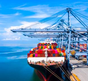 Sea Freight Tunisia -Freight forwarding Tunisia - MPL